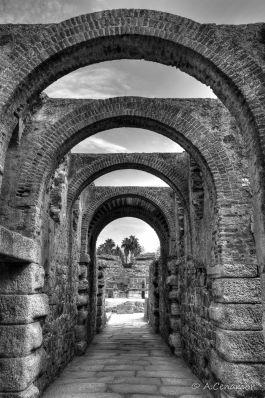 Arcos anfiteatro BW
