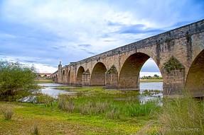 Puente romano Medellín