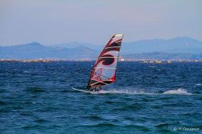 Windsurf I