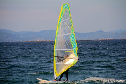 Windsurf IV