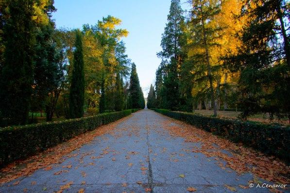 Paseo Jardín del Príncipe