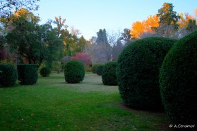 Jardín del Príncipe I