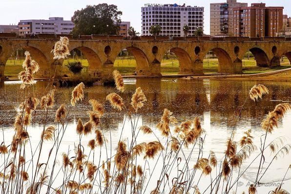 Puente de Palmas, río Guadiana