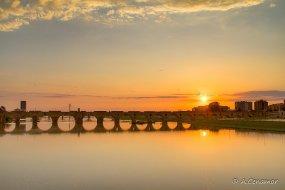 Puente de Palmas I