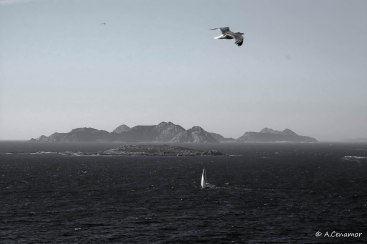 Islas Cies BW