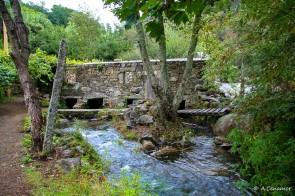 Molino río Umia