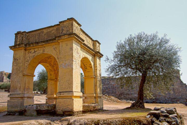 Alcazaba I