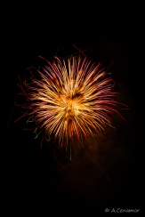 Parla fireworks celebrations I