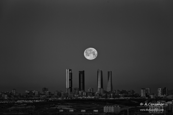 Moonset on Madrid BW