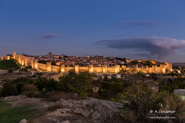 Ávila in blue hour