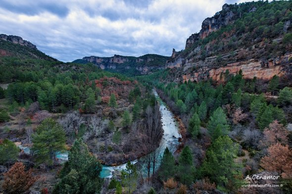 The majestic river
